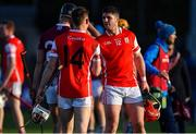 5 November 2017; David Treacy, right, of Cuala celebrates with team-mate Con O'Callaghan after the AIB Leinster GAA Hurling Senior Club Championship Quarter-Final match between Cuala and Dicksboro at Parnell Park in Dublin. Photo by Brendan Moran/Sportsfile