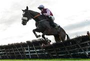 26 November 2017; Le Hachette, with Cathal Landers up, jump the last during the Tattersalls Ireland Irish EBF Mares Auction Maiden Hurdle at Navan Racecourse in Navan, Co Meath. Photo by Cody Glenn/Sportsfile