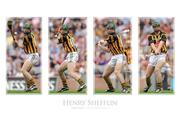 Henry Shefflin, Hurling, Legends Series.