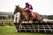 10 December 2017; Gun Digger, with Davy Russell up, compete in the Corinthian Restaurant On Sale Now Maiden Hurdle at Punchestown Racecourse in Naas, Co Kildare. Photo by Cody Glenn/Sportsfile