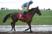 10 December 2017; Dumhach Thra, with Katie Walsh up, on their way to post ahead of the Old House, Kill (Pro/Am) Flat Race at Punchestown Racecourse in Naas, Co Kildare. Photo by Cody Glenn/Sportsfile