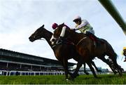 28 December 2017; Hardback, with Shane Shortall up, left, crosses the line ahead of Low Sun, with Paul Townend up, to win the Irish Daily Star Christmas Novice Handicap Hurdle on day 3 of the Leopardstown Christmas Festival at Leopardstown in Dublin. Photo by David Fitzgerald/Sportsfile
