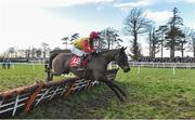 25 January 2018; Peace N' Milan, with Cian Maher up, jump the last on their way to winning the Adare Manor Opportunity Handicap Hurdle at the Gowran Park Races in Gowran Park, Co Kilkenny. Photo by Matt Browne/Sportsfile