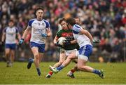 28 January 2018; Neil Douglas of Mayo in action against Darren Hughes of Monaghan during the Allianz Football League Division 1 Round 1 match between Monaghan and Mayo at St Tiernach's Park in Clones, County Monaghan. Photo by Seb Daly/Sportsfile