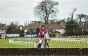3 February 2018; Petit Mouchoir, with Davy Russell up, look at the final fence prior to the Frank Ward Solicitors Arkle Novice Steeplechase during Day 1 of the Dublin Racing Festival at Leopardstown Racecourse in Leopardstown, Dublin. Photo by David Fitzgerald/Sportsfile