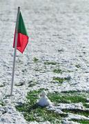 11 February 2018; A snowman on the pitch in Grattan Park after the Allianz Football League Division 1 Round 3 match between Monaghan and Kerry at Páirc Grattan in Inniskeen, Monaghan, was called off. Photo by Brendan Moran/Sportsfile
