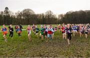 10 February 2018; A general view of the start of Girls U13 during the Irish Life Health Intermediates, Masters, Juvenile B & Juvenile XC Relays at Kilcoran Estate in Clainbridge, County Galway.   Photo by Sam Barnes/Sportsfile