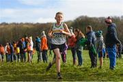 10 February 2018; Jack Fenlon of St Abbans AC, Co Carlow, on his way to finishing second in the Boys U13 event during the Irish Life Health Intermediates, Masters, Juvenile B & Juvenile XC Relays at Kilcoran Estate in Clainbridge, County Galway.   Photo by Sam Barnes/Sportsfile