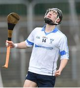 22 February 2018; Sean Currie of Dublin North celebrates after scoring a goal during the Top Oil Corn Ui Dhuill Leinster Post Primary Schools A SHC Final match between St Kieran's and Dublin North at Netwatch Cullen Park in Carlow. Photo by Matt Browne/Sportsfile