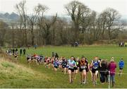 23 February 2018; Eventual winner Sarah Butler, 238, from Laurel Hill Secondary School, Co. Limerick leads the field with Saoirse Tomkins, 61, from Boherbue Comprehensive School, Co. Cork, and Aisling Healy from St. Flannan's College, Ennis, Co. Clare during the girls minor 2000m during the Irish Life Health Munster Schools Cross Country at Waterford IT in Waterford. Photo by Matt Browne/Sportsfile