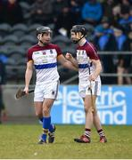 24 February 2018; Pat Ryan, left, and Barry Murphy of UL celebrate after the Electric Ireland HE GAA Fitzgibbon Cup Final match between DCU Dochas Eireann and University of Limerick at Mallow GAA Grounds in Mallow, Co Cork. Photo by Diarmuid Greene/Sportsfile