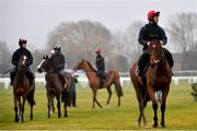 12 March 2018; Footpad, with Sayed Raza up, on the gallops ahead of the Cheltenham Racing Festival at Prestbury Park in Cheltenham, England. Photo by Ramsey Cardy/Sportsfile