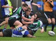 14 March 2018: Shane Stokes of Gorey Community School celebrates after scoring a try with team-mates Joseph Naughton and Michael Doyle during the McMullan Cup Final match between Gorey Community School and Dundalk Grammar at Donnybrook Stadium in Dublin. Photo by Matt Browne/Sportsfile