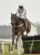 2 April 2018; Getabird, with Paul Townend up, jumps the last on their way to winning the Rathbarry & Glenview Studs Novice Hurdle on Day 2 of the Fairyhouse Easter Festival at Fairyhouse Racecourse in Meath. Photo by Seb Daly/Sportsfile