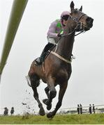 2 April 2018; Getabird, with Paul Townend up, on their way to winning the Rathbarry & Glenview Studs Novice Hurdle on Day 2 of the Fairyhouse Easter Festival at Fairyhouse Racecourse in Meath. Photo by David Fitzgerald/Sportsfile