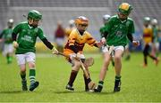 6 April 2018; Action from Whitechurch, Co Cork, and Blackrock, Co Limerick, during Day 4 of the The Go Games Provincial days in partnership with Littlewoods Ireland at Croke Park in Dublin. Photo by Piaras Ó Mídheach/Sportsfile