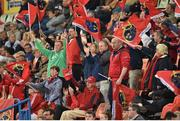 13 April 2018; Munster supporters during the Guinness PRO14 Round 20 match between Toyota Cheetahs and Munster at Toyota Stadium in Bloemfontein, South Africa. Photo by Johan Pretorius/Sportsfile