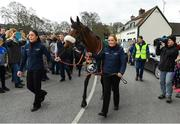 15 April 2018; The winner of the 2018 Randox Health Aintree Grand National Tiger Roll is led through the village of Summerhill in County Meath by grooms Karen Morgan, left, and Louise Dunne. Photo by Brendan Moran/Sportsfile