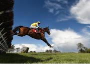 25 April 2018; Prince Garyantle, with Adam Short up, jumps the sixth on their way to winning the Adare Manor Opportunity Series Final Handicap Hurdle at Punchestown Racecourse in Naas, Co. Kildare. Photo by Seb Daly/Sportsfile
