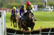 27 April 2018; Supasundae with Robbie Power up, jump the last on their way to winning The BETDAQ 2% Commission Punchestown Champion Hurdle at Punchestown Racecourse in Naas, Co. Kildare. Photo by Matt Browne/Sportsfile