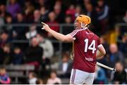 13 May 2018; Niall Mitchell of Westmeath celebrates after scoring his side's third goal during the Joe McDonagh Cup Round 2 match between Westmeath and Meath at TEG Cusack Park in Westmeath. Photo by Sam Barnes/Sportsfile