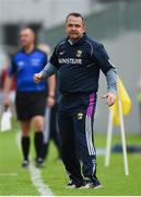 26 May 2018; Wexford manager Davy Fitzgerald during the Leinster GAA Hurling Senior Championship Round 3 match between Offaly and Wexford at Bord na Mona O'Connor Park in Tullamore, Offaly. Photo by Matt Browne/Sportsfile