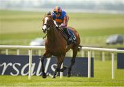27 May 2018; Lancaster Bomber, with Seamie Heffernan up, on their way to winning the Tattersalls Gold Cup during the Curragh Races Irish 1000 Guineas Day at the Curragh in Kildare. Photo by Barry Cregg/Sportsfile
