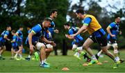 7 June 2018; Jordi Murphy, left, and Jonathan Sexton during Ireland rugby squad training at Royal Pines Resort in Queensland, Australia. Photo by Brendan Moran/Sportsfile