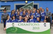 10 June 2018; Eyrecourt, Co Galway celebrate after the division 2 Camogie shield final, at the John West Féile na nGael national competition which took place this weekend across Connacht, Westmeath and Longford. This is the third year that the Féile na nGael and Féile Peile na nÓg have been sponsored by John West, one of the world's leading suppliers of fish. The competition gives up-and-coming GAA superstars the chance to participate and play in their respective Féile tournament, at a level which suits their age, skills and strengths. Photo by Matt Browne/Sportsfile