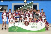 10 June 2018; Conor Lyng captain of Kilnadeema-Leitrim from Co Galway, lifts the trophy after the Division 2 Hurling shield final, at the John West Féile na nGael national competition which took place this weekend across Connacht, Westmeath and Longford. This is the third year that the Féile na nGael and Féile Peile na nÓg have been sponsored by John West, one of the world's leading suppliers of fish. The competition gives up-and-coming GAA superstars the chance to participate and play in their respective Féile tournament, at a level which suits their age, skills and strengths. Photo by Matt Browne/Sportsfile