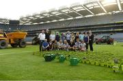10 June 2018; Volunteers from the GAA Museum and the Croke Park Community team took up sections of the Croke Park pitch following the Leinster GAA Football Championship Semi-Finals on Sunday 10th June. These unique potted pieces of Croke Park are now on sale for €10 in the GAA Museum gift shop for a limited period. All profits from the sale of these pots will go to the Official GAA Charities for 2018 – Mayo Roscommon Hospice Foundation, Cavan Monaghan Palliative Care, Kerry Hospice Foundation, Jack and Jill Children's Foundation and Concern. Croke Park, Dublin. Photo by Piaras Ó Mídheach/Sportsfile