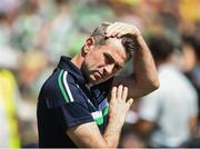 24 June 2018; Fermanagh Manager Rory Gallagher during the Ulster GAA Football Senior Championship Final match between Donegal and Fermanagh at St Tiernach's Park in Clones, Monaghan. Photo by Oliver McVeigh/Sportsfile