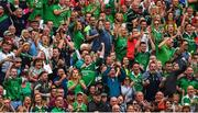 29 July 2018; Limerick supporters celebrate a score during the GAA Hurling All-Ireland Senior Championship semi-final match between Cork and Limerick at Croke Park in Dublin. Photo by Piaras Ó Mídheach/Sportsfile