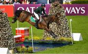 10 August 2018; Paul O'Shea competing on Skara Glen's Machu Picchu during the Longines FEI Jumping Nations Cup of Ireland during the StenaLine Dublin Horse Show at the RDS Arena in Dublin. Photo by Harry Murphy/Sportsfile