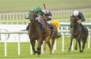 12 August 2018; Mid Winster, with Ben Coen up, on their way to winning the Irish Stallion Farms EBF Maiden during Phoenix Stakes Day at the Curragh Races in Curragh, Kildare. Photo by Matt Browne/Sportsfile
