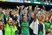 19 August 2018; Limerick supporters celebrate their side's second goal during the GAA Hurling All-Ireland Senior Championship Final match between Galway and Limerick at Croke Park in Dublin.  Photo by Ramsey Cardy/Sportsfile