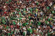 19 August 2018; Limerick supporters in the Davin Stand celebrate their side's third goal during the GAA Hurling All-Ireland Senior Championship Final match between Galway and Limerick at Croke Park in Dublin. Photo by Daire Brennan/Sportsfile