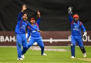 27 August 2018; Rashid Khan Arman of Afghanistan makes an appeal during the One Day International match between Ireland and Afghanistan at Stormont Cricket Ground, Belfast, Co. Antrim. Photo by Seb Daly/Sportsfile