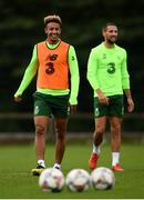 8 September 2018; Callum Robinson, left, and Conor Hourihane during a Republic of Ireland training session at Dragon Park in Newport, Wales. Photo by Stephen McCarthy/Sportsfile