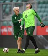 10 September 2018; Colin Doyle, in the company of goalkeeping coach Seamus McDonagh, reacts to picking up a hand injury during a Republic of Ireland training session at Municipal Stadium in Wroclaw, Poland. He continued during the session moments later after treatment. Photo by Stephen McCarthy/Sportsfile