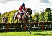 6 October 2018; Chief Justice, with Davy Russell up, jumps the last on their way to winning the Golf Memberships 2019 3 year old Hurdle from second place It's Paddys Day wih Philip Enright up, during Champion Chase Day at Gowran Park Races in Gowran, Kilkenny. Photo by Matt Browne/Sportsfile