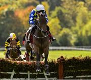 6 October 2018; Vinnie The Hoddie, with Mark Walsh up, on their way to winning the Connolly's Red Mills Irish EBF Auction Maiden Hurdle during Champion Chase Day at Gowran Park Races in Gowran, Kilkenny. Photo by Matt Browne/Sportsfile