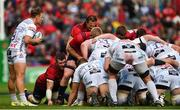 20 October 2018; Peter O'Mahony of Munster prepares to bind to team-mate John Ryan for a scrum during the Heineken Champions Cup Pool 2 Round 2 match between Munster and Gloucester at Thomond Park in Limerick. Photo by Diarmuid Greene/Sportsfile