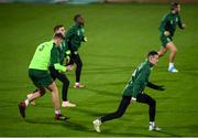 18 November 2018; Shaun Williams during a Republic of Ireland training session at Ceres Park in Aarhus, Denmark. Photo by Stephen McCarthy/Sportsfile