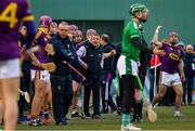 18 November 2018; Wexford manager Davy Fitzgerald during the Aer Lingus Fenway Hurling Classic 2018 semi-final match between Limerick and Wexford at Fenway Park in Boston, MA, USA. Photo by Piaras Ó Mídheach/Sportsfile