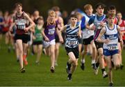25 November 2018; Conor Doran of Lagan Valley AC, Belfast, centre, competing in the Boys U16 4,000m during the Irish Life Health National Senior & Junior Cross Country Championships at National Sports Campus in Abbottstown, Dublin. Photo by Harry Murphy/Sportsfile