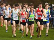 25 November 2018; Sean Cotter of Craughwell A.C. Co. Galway, left, Dean Casey of Ennis Track A.C. Co. Calrem centre, and Scott Fagan of Metro/St. Brigid's A.C. Co. Dublin, competing in the Boys U16 4,000m during the Irish Life Health National Senior & Junior Cross Country Championships at National Sports Campus in Abbottstown, Dublin. Photo by Harry Murphy/Sportsfile