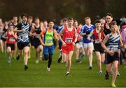 25 November 2018; Ben O'Connor of Leevale A.C. Co. Cork, in red, competing in the Boys U16 4,000m during the Irish Life Health National Senior & Junior Cross Country Championships at National Sports Campus in Abbottstown, Dublin. Photo by Harry Murphy/Sportsfile