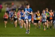 25 November 2018; Luke Duffy of Tullamore Harriers A.C. Co. Offaly, competing in the Boys U14 2,000m during the Irish Life Health National Senior & Junior Cross Country Championships at National Sports Campus in Abbottstown, Dublin. Photo by Harry Murphy/Sportsfile