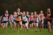 25 November 2018; Eleanor Foot of Bray Runners A.C. Co. Wicklow, second left, competing in the Girls U14 2,000m during the Irish Life Health National Senior & Junior Cross Country Championships at National Sports Campus in Abbottstown, Dublin. Photo by Harry Murphy/Sportsfile